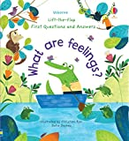 What Are Feelings?: Lift-the-Flap First Questions & Answers