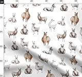 Lama, Lamas, Zoo, Tier, Südamerika, Beige, Beige Stoffe -