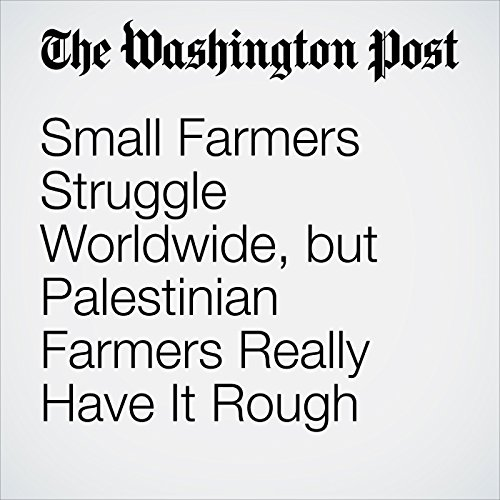 Small Farmers Struggle Worldwide, but Palestinian Farmers Really Have It Rough copertina