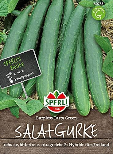 80783 Sperli Premium Gurken Samen Burpless Tasty Green | Freilandgurke | Gewächshausgurke | Gurken Samen Freiland | Gurken Saatgut