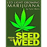 From SEED to WEED: LED light growing MARIJUANA (English Edition)