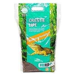 PETBLIS Prorep Crestie Life Substrate, 10 Litre