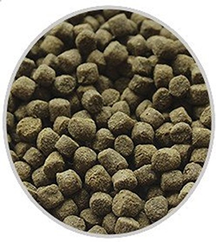 America's Best Koi Food 5 lbs Color-Enhancing Large Floating Pond Pellets for Koi and Goldfish Kenny's Vibrant Vittles
