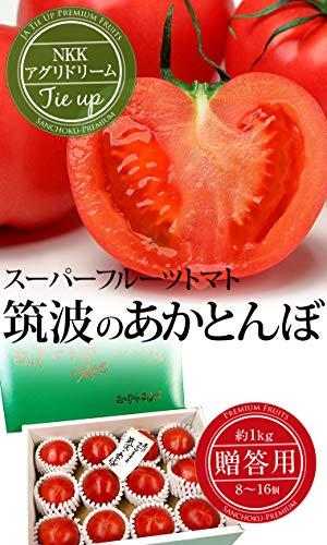 NKKアグリドリーム(KEKグループ)『スーパーフルーツトマト約1kg』