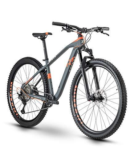 RAYMON HardRay Nine 5.0 2020 - Bicicleta de montaña (29''), color gris y rojo, tamaño 43 cm, tamaño de rueda 29.0