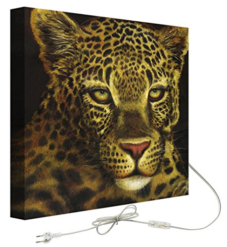 Decoralive Leopardo Frente - Cuadro retroiluminado, 75 x 75 x 5 cm