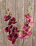 PARC Network - Kunstorchidee, real Touch, rot-schwarz, 90cm - Kunstzweig - Orchideenzweig Künstlich - Orchideen Plastik - Seiden Orchidee - Kunstblume