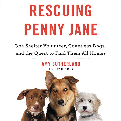 Rescuing Penny Jane audiobook cover art