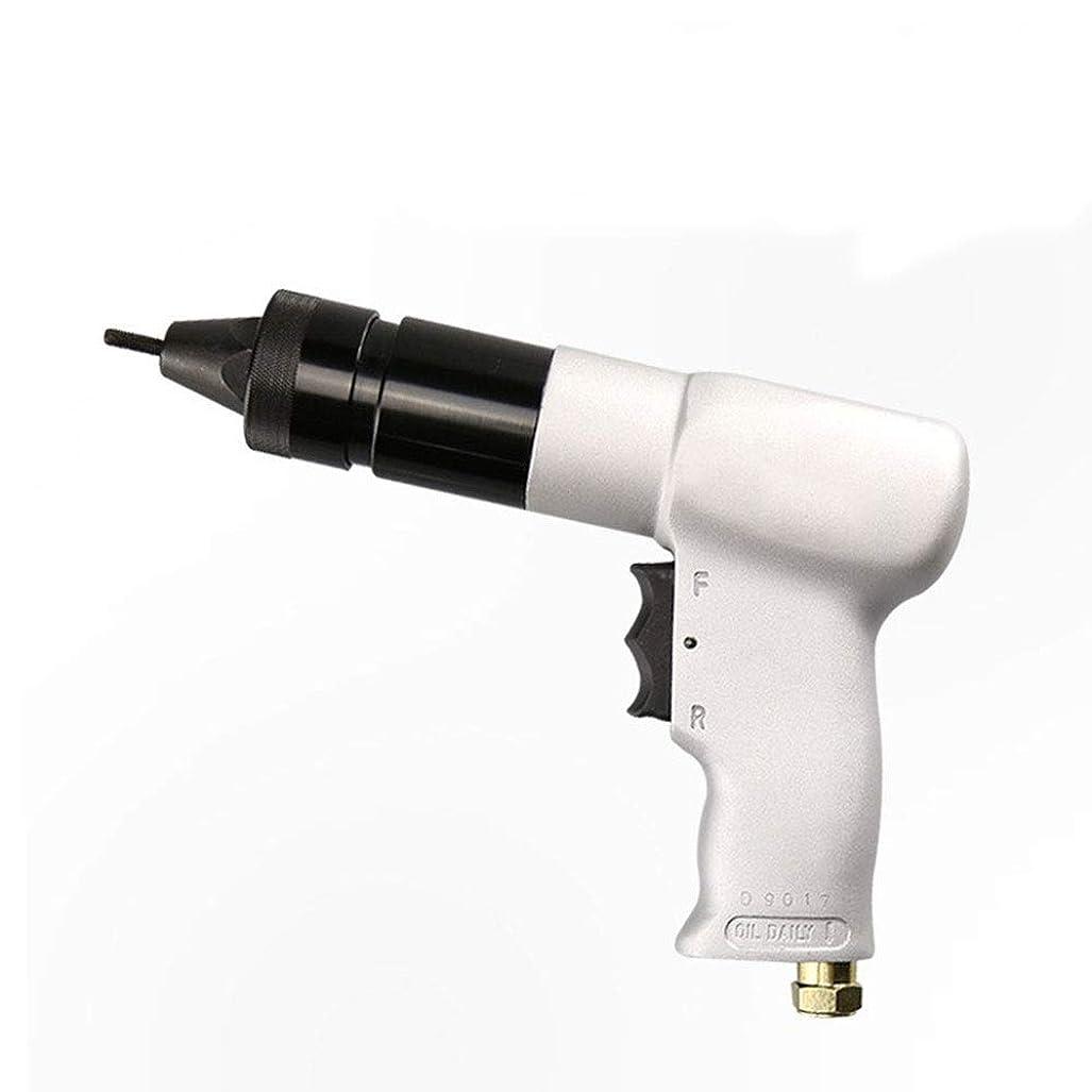 人類ヤングスポーツの試合を担当している人エア工具 ハンドツール 空気圧リベットナットガン、空気圧リベットガン工業用グレードハンドツール