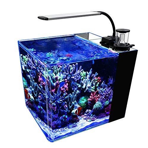 GankPike 8-Gallon Saltwater Aquarium Marine Fish Tank Reef Tank with Lid,...