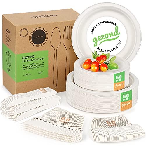 Einweg-Pappteller-Set, kompostierbare Teller, Zuckerrohr-Utensilien, umweltfreundlich, 50 biologisch abbaubare Teller, Gabeln, Messer und Löffel für Party, Camping, 250 Stück