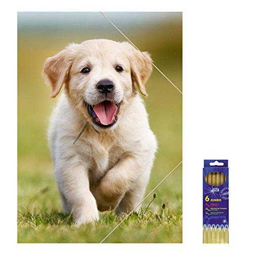 Kunststoffmappe mit Gummizugverschluss Hund für DIN A3, Zeichenmappe inkl. 6er Pack Buntstifte, Sammelmappe, Mappe