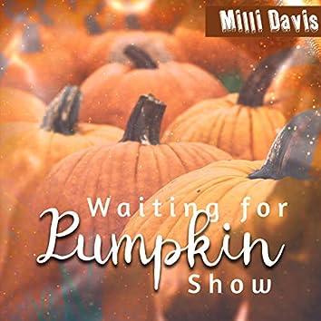 Waiting for Pumpkin Show
