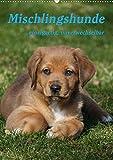Mischlingshunde (Wandkalender 2021 DIN A2 hoch)