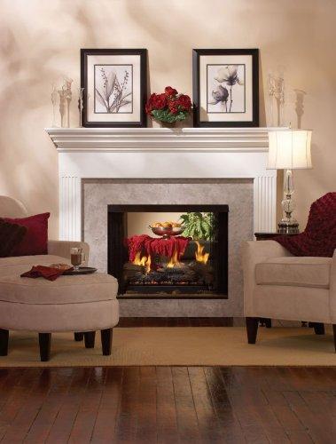 Purchase Premium 36 DV See-Through Fireplace DVP36SP32EP - Liquid Propane