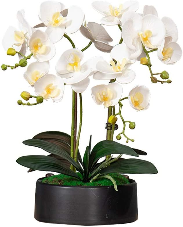 Artificial Flower Set, Sale price Max 74% OFF Flowers With Planter Phalaen