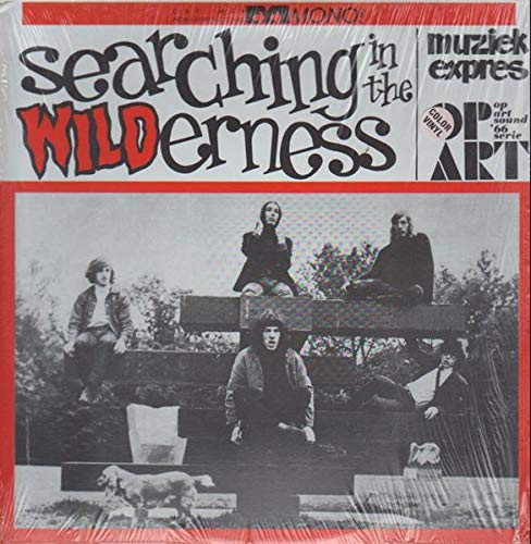 Searching In The Wilderness [Vinyl LP]