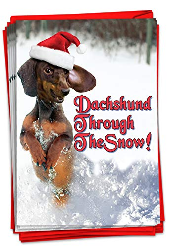 NobleWorks - Box of 12 Dog Christmas Cards Funny - Fun Adorable Pet Dogs, Animal Holiday Greetings with Envelopes (1 Design, 12 Cards) - Dachshund Through the Snow C4287XSG-B12