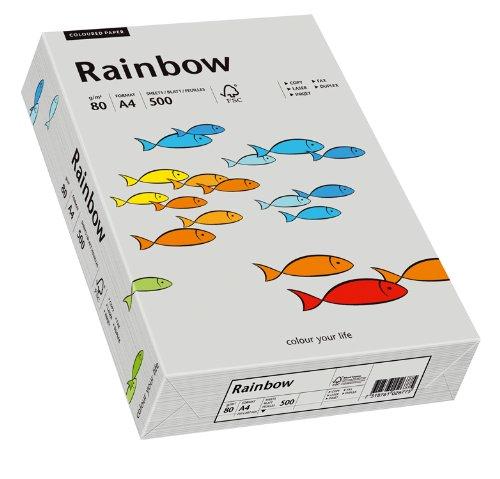 Papyrus 88042805 Drucker-/Kopierpapier bunt, Bastelpapier: Rainbow 80 g/m², A4 500 Blatt, matt, grau
