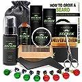 Best 10 in 1 Beard Grooming & Growth Kit w/Beard Oil,Beard Shaping Tool,Beard Wash/Shampoo,Beard Balm,Beard Comb,Beard Brush,Beard Scissor,Storage Bag,Gifts for Men Him Dad by ZECREK