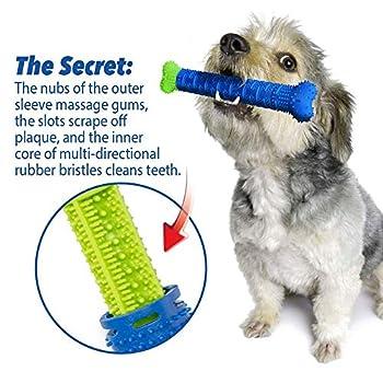 ASOCEA Brosse à dents pour chien Jouet à mâcher Durable pour le nettoyage des dents de chiot chien Accessoire de soins dentaires