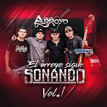 El Arroyo Sigue Sonando Vol. 1 (En Vivo)