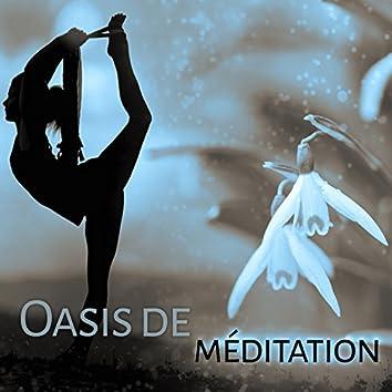 Oasis de méditation – Méditation profonde, New age musique, Harmonie, Détente