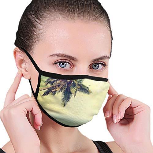 ERSHILIU Gesichtsbedeckung, Karibik-Palme, Rocky Shore-Druck, Sturmhaube, Unisex, wiederverwendbar, winddicht, Anti-Staub-Mund-Bandanas, Outdoor, Camping, Motorrad, Laufen
