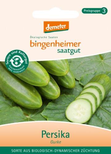 Bingenheimer Saatgut - Freilandgurke Persika - Gemüse Saatgut / Samen