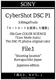 sony cybershot dsc p1 auto mode file1 tabibitotokamera sony cybershot dsc p1 (Japanese Edition)