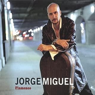 Flamenco by Jorge Miguel