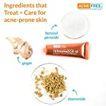 Acne treatment products AcneFree Terminator 10 Acne Spot Treatment with Benzoyl Peroxide 10% Maximum Strength