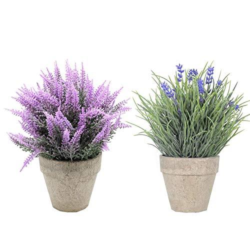 SHACOS 2 Stücke Künstliche Blumen Mini Bonsai Kunstpflanze mit grauen Topf, für Hochzeit/Büro/Zuhause Deko, 2er Set Zimmerpflanze Lavendel