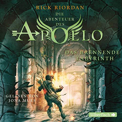 Das brennende Labyrinth audiobook cover art