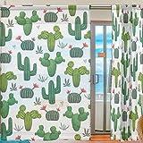 Ahomy 2 Panels Voile Fenstervorhang Kakteen Sukkulenten Floral Tüll Sheer Gardine für Wohnzimmer Fenster Schlafzimmer 198 x 139,7 cm, Polyester, Multi, 139.7x198.1 cm