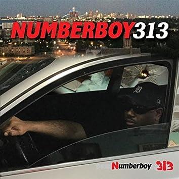 Numberboy 313