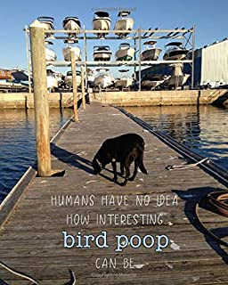 Humans Have No Idea How Interesting Bird Poop Can Be: Dog and Outdoor Lover's 8x10 Notebook