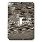 3dRose LLC lsp_24524_1 Antique Peel, Single Toggle Switch