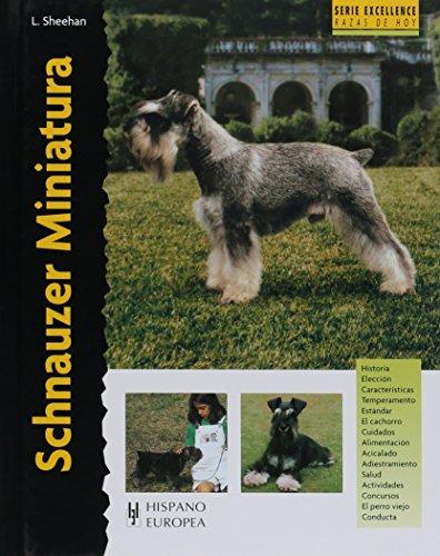 Schnauzer Miniatura (Excellence)