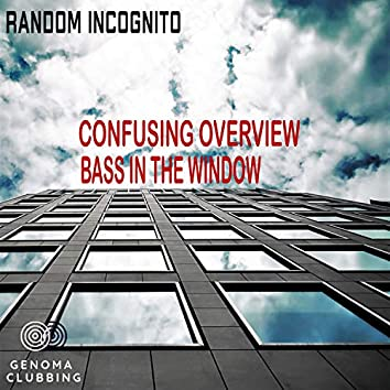 Confusing Overview / Bass In The Window
