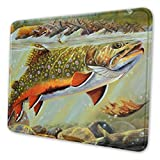 ENJOYG Mouse Mat Unique Custom Brook Trout Fly Fishing Printed Mouse Pad Personality Desings Gaming Mouse Pad Multiple Size