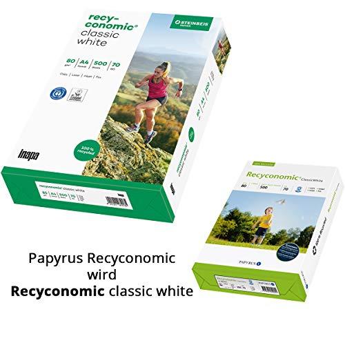 Papyrus 88066351 Recycling-Kopierpapier RecyStar Polar 80 g DIN-A4 matt 5x500 Blatt wei/ß