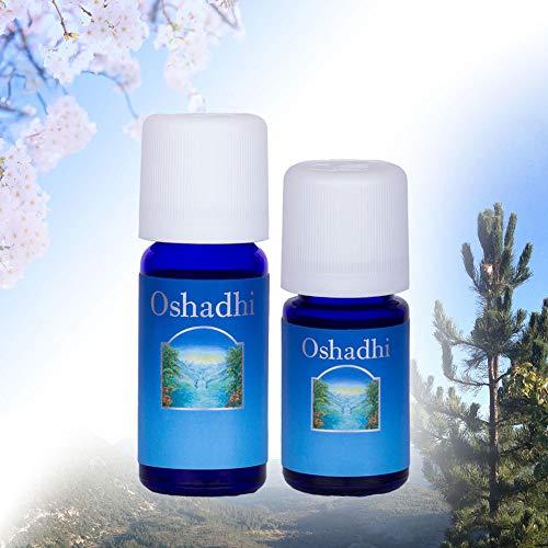 Oshadhi Aceite esencial de menta (Mentha Piperita) – Refrescante, Estimulante, Enfriador – 10 ml