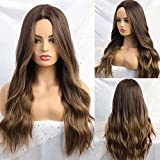 Alanhair Ombre Brown Wig Middle Parting Long Curly Women's Wigs NONE Lace 24 Inch Wigs for Women Natural Looking Synthetic Wigs