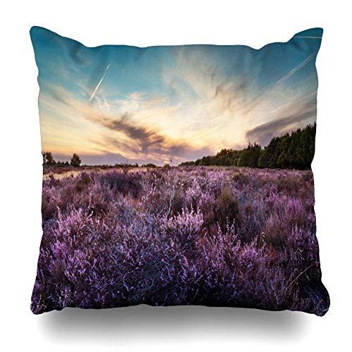 Funny Z Kissenbezug lila Heather Pflanzen Natur Panorama Calluna Vulgaris Wolkengebilde Landschaft Design Niederlande Home Decor Square Throw Pillow Cover 18 ~ 18 Zoll