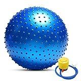 TOMSHOO Anti-Burst Yoga Ball verdickt Stabilität Balance Ball Pilates körperliche Fitness Gymnastikball 55CM / 65CM / 75CM Geschenk Luftpumpe (Blau, 55cm)