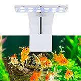 Pssopp Iluminación de acuario con clip LED para plantas de agua dulce