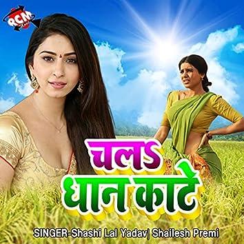 Chala Bhauji Dhan Kate