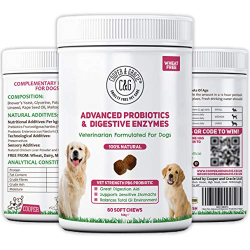 C&G Pets | PROBIOTIC FIBRE FOR DOGS 60 SOFT CHEWS | HEALTHY DIGESTIVE TRACT | RESTORES MICROBIAL BALANCE IN GUT | OPTIMUM UTILISATION OF NEUTRIENTS | VETERINARIAN FORMULATED