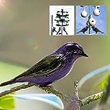 FEIYI Pesca y Caza Impermeable Realista Púrpura Con Monte Simulación Pájaro Señuelo Patio Jardín Caza Señuelo